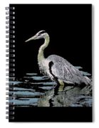 Patience On Little Lake Spiral Notebook