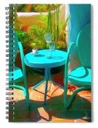Patio Antics Spiral Notebook