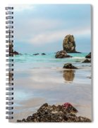 Patrick And Friends Visit Cannon Beach Spiral Notebook