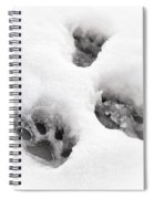Paw Print  Spiral Notebook