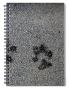 Paws Spiral Notebook