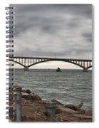 Peace Bridge Spiral Notebook
