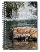 Peace In The Park Spiral Notebook
