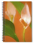 Peace Lily Grace 10 Spiral Notebook