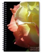 Peace Rose 2 Spiral Notebook