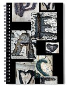 Peace Written In The Trees 3 Spiral Notebook