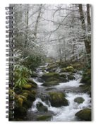 Peaceful Flow Spiral Notebook
