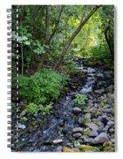 Peaceful Flowing Creek Spiral Notebook