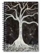 Peaceful Night  Spiral Notebook