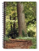 Peaceful Path Spiral Notebook