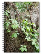 Peaceful Place Spiral Notebook