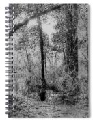 Peaceful Trees Spiral Notebook