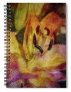 Peach And Yellow 2625 Idp_2 Spiral Notebook