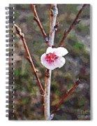 Peach Blossom Spiral Notebook