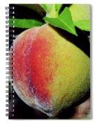 Peach Fuzz Spiral Notebook