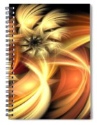 Peach Gold Nautilus Spiral Notebook