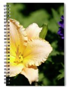 Peach Lily Spiral Notebook