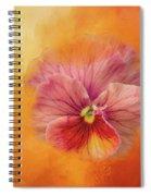 Peach Pansy Spiral Notebook