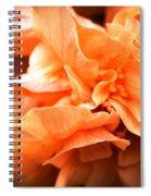 Peach Ripples Spiral Notebook