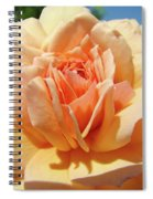 Peach Rose Art Prints Roses Flowers Giclee Prints Baslee Troutman Spiral Notebook