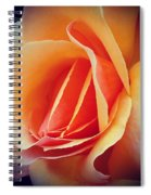 Peach Rose Spiral Notebook