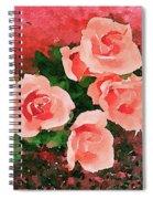 Peach Roses Spiral Notebook
