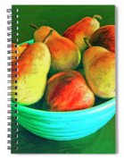 Peaches And Pears Spiral Notebook