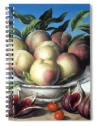 Peaches In Delft Bowl With Purple Figs Spiral Notebook