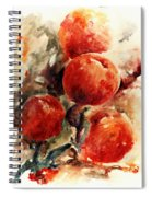 Peaches Spiral Notebook
