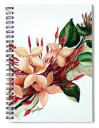 Peachy Ixora Spiral Notebook