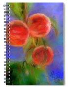 Peachy Keen Spiral Notebook