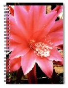 Peachy Pink Cactus Orchid Spiral Notebook