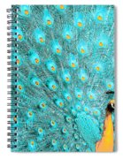 Peacock 1 Spiral Notebook