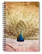 Peacock Bird Textured Background Spiral Notebook