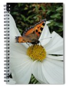 Peacock Butterfly On Cosmos Spiral Notebook