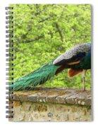 Peacock, Chateau De Saint-germain-de-livet Spiral Notebook