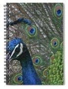 Peacock Enhanced Spiral Notebook