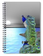 Peacock Fantasy Spiral Notebook