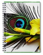 Peacock Feather And Gladiola 4 Spiral Notebook