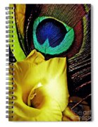 Peacock Feather And Gladiola Spiral Notebook