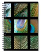 Peacock Feather Mosaic Spiral Notebook