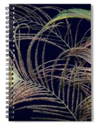 Peacock Feathers -1 Spiral Notebook