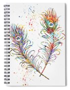 Peacock Feathers-colorful Spiral Notebook