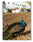 Peacock On The Farm Spiral Notebook