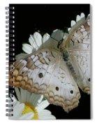 Peacock Twist Spiral Notebook