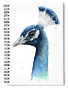Peacock Watercolor Spiral Notebook