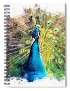 Peacock Watercolor Painting Spiral Notebook