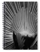 Peacocks Ass Original Spiral Notebook