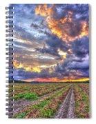 Peanuts, Clouds And Sun Spiral Notebook