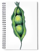 Peapod Spiral Notebook